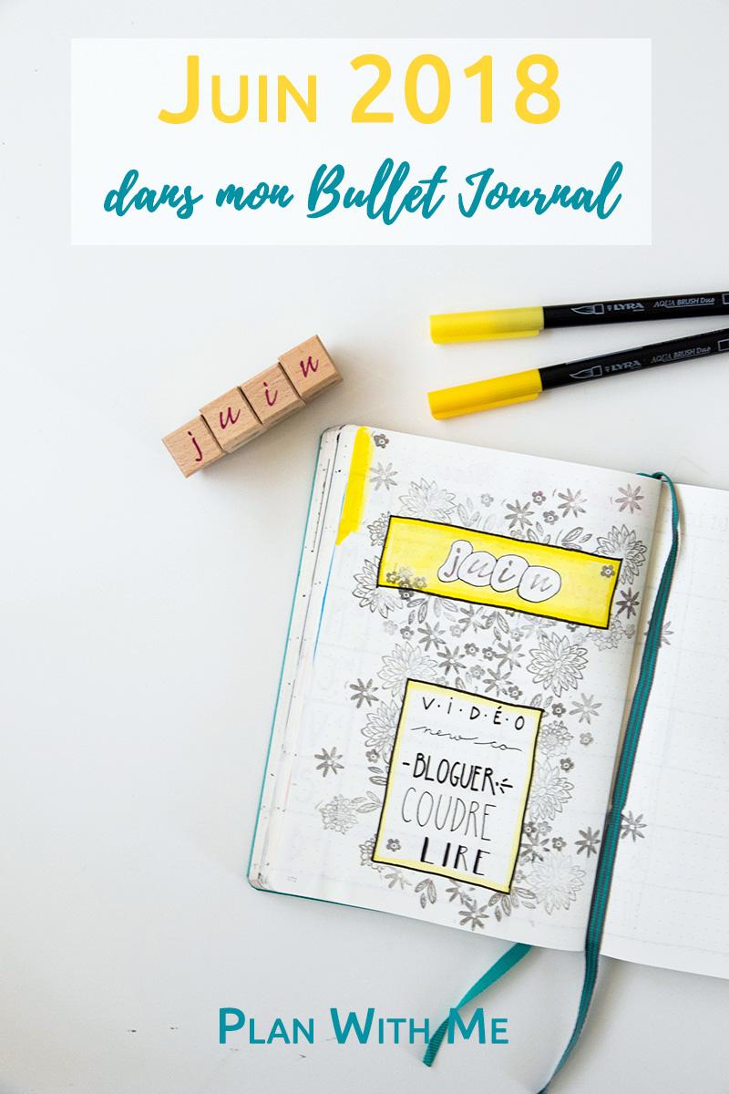 Juin 2018 dans mon Bullet Journal