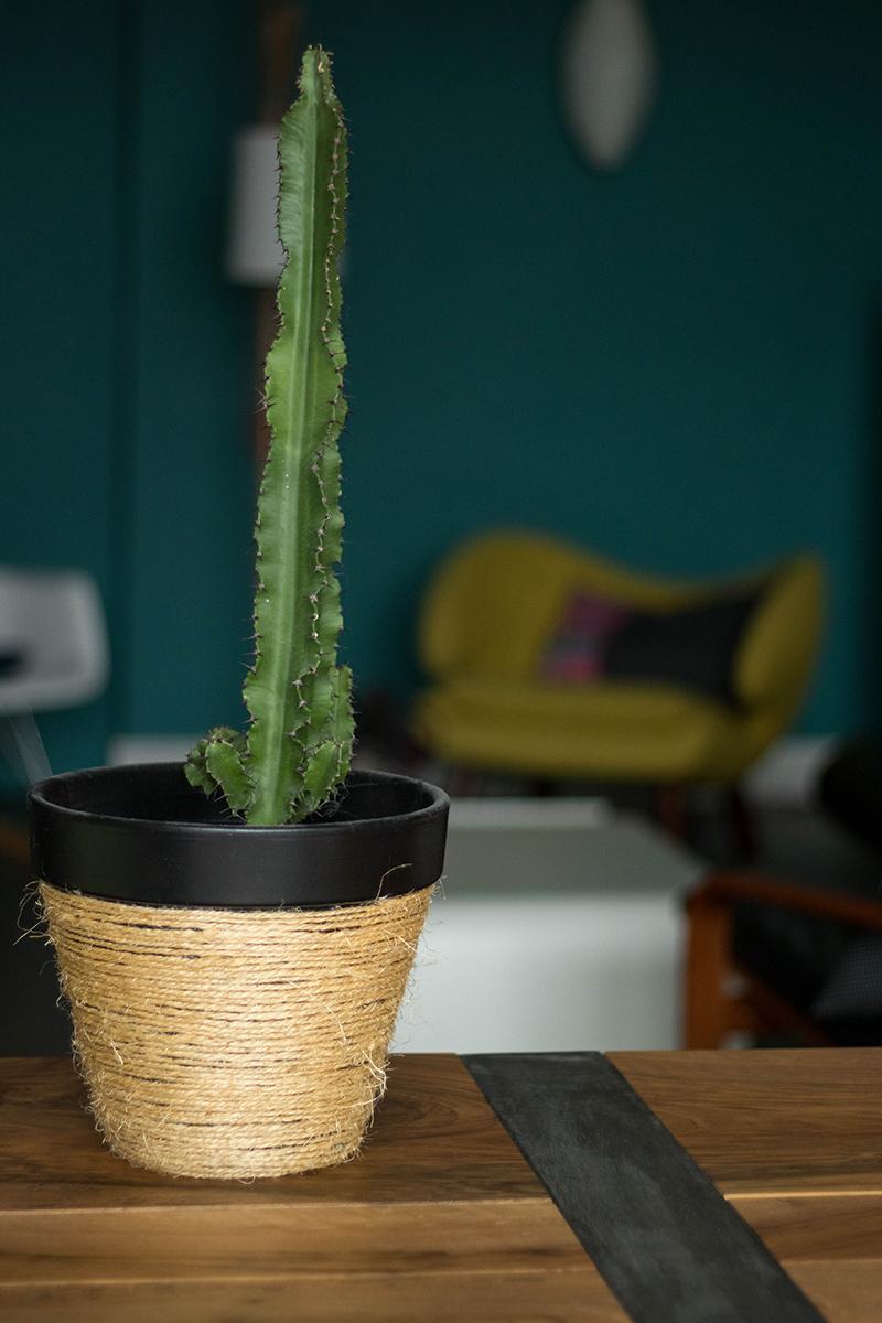 {DIY} : Un cache pot tressé en corde pour mon cactus - Avril sur un fil