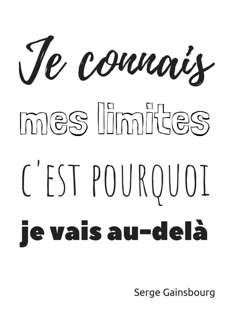 Je connais mes limites c'est pourquoi je vais au-delà – Serge Gainsbourg